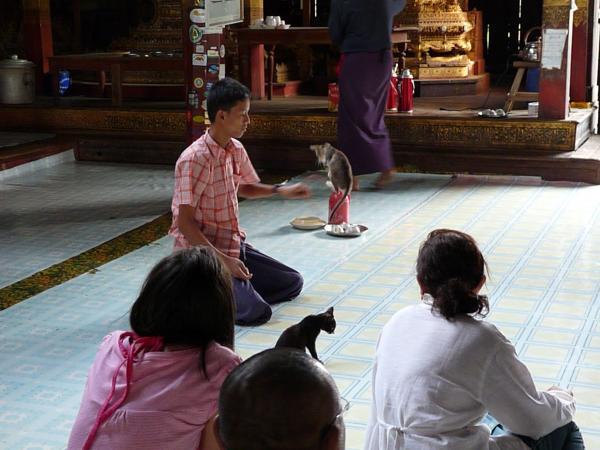 Birmanie - Lac Inle : Monastère Nga Phe Kyaung