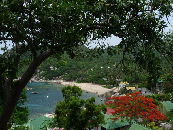 Thaïlande - Koh Tao : La baie d'Ao Tanote