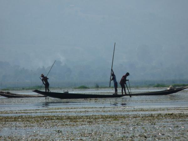 Birmanie - Lac Inle : Pêcheurs