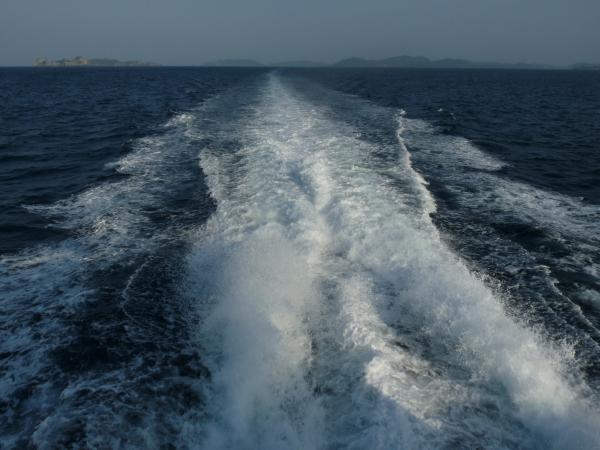 Thaïlande - Koh Tao : Speed boat