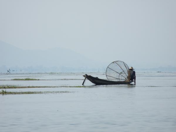 Birmanie - Lac Inle : Pêche à la nasse