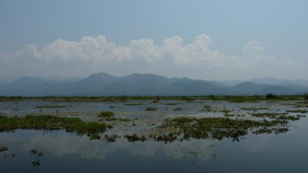 Birmanie - Lac Inle